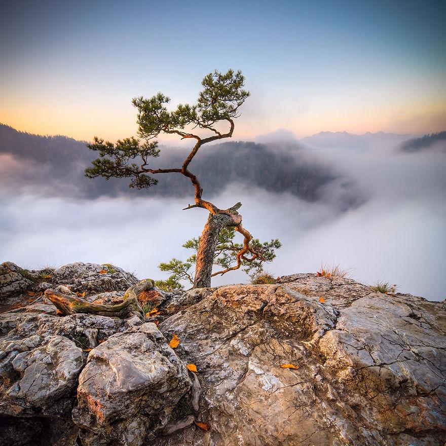Удивительная красота Татр в фотографиях польского художника