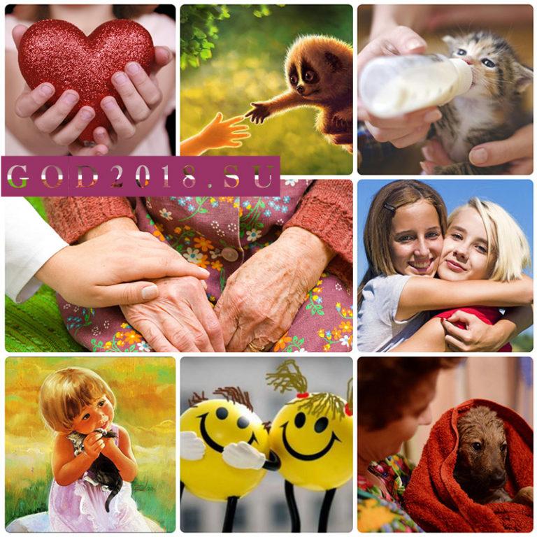 День спонтанного проявления доброты - 17 февраля