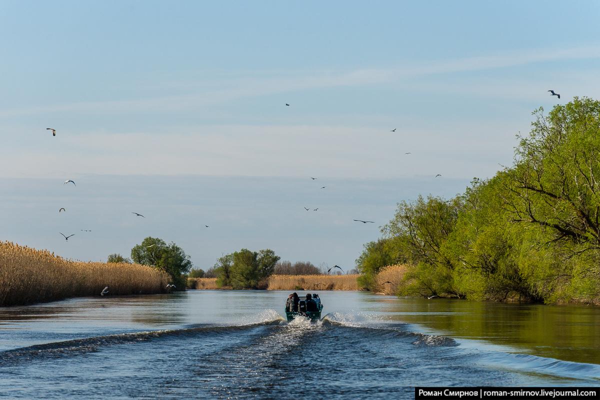 На лодке по дельте Волги. Каспийские раскаты.
