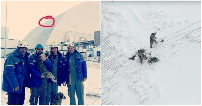 Рабочие рискнули жизнью, чтобы спасти бродячую собаку с крыши саркофага в Чернобыле