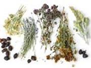 Лечебные травяные сборы