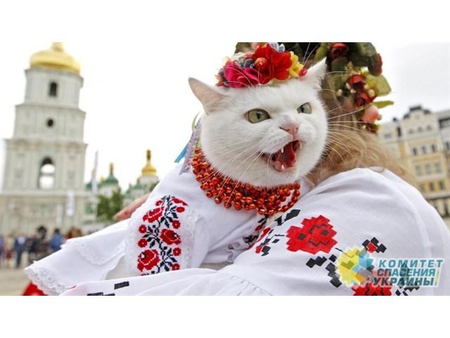 Зачем Украине перехват знамен «Русского мира»?