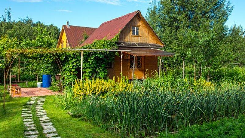 Не огородом единым: как превратить дачу в отличное место для отдыха