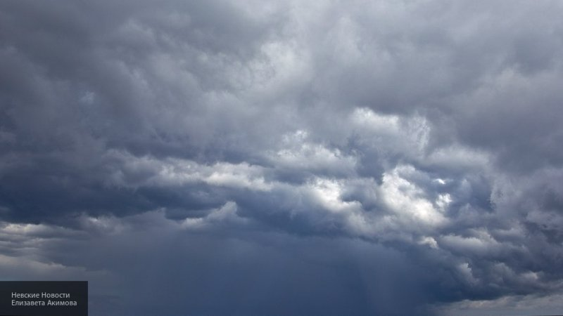 В Архангельскую область придут дожди с сильными ветрами, сообщает МЧС