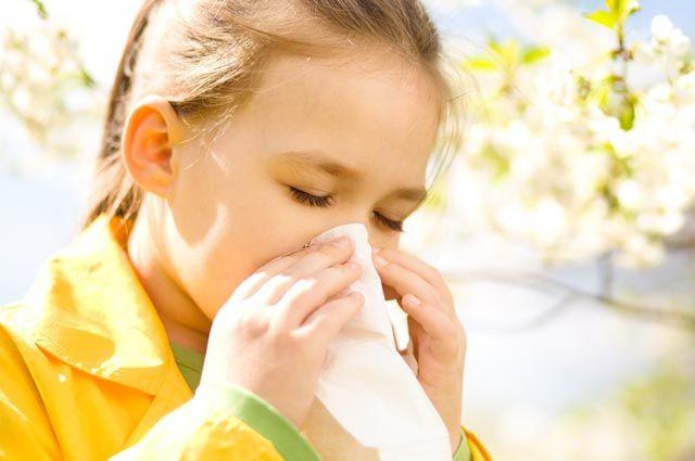 Насморк от берёзы. Как лечить сезонную аллергию детям?