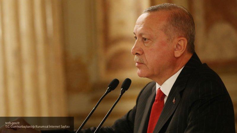 Эксперт согласился со словами Эрдогана об отличии курдов от курдских террористов
