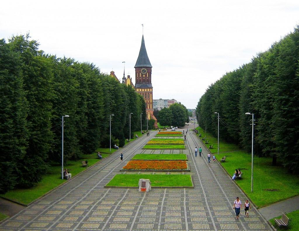 отложило картинки на сайт калининград нем молодые