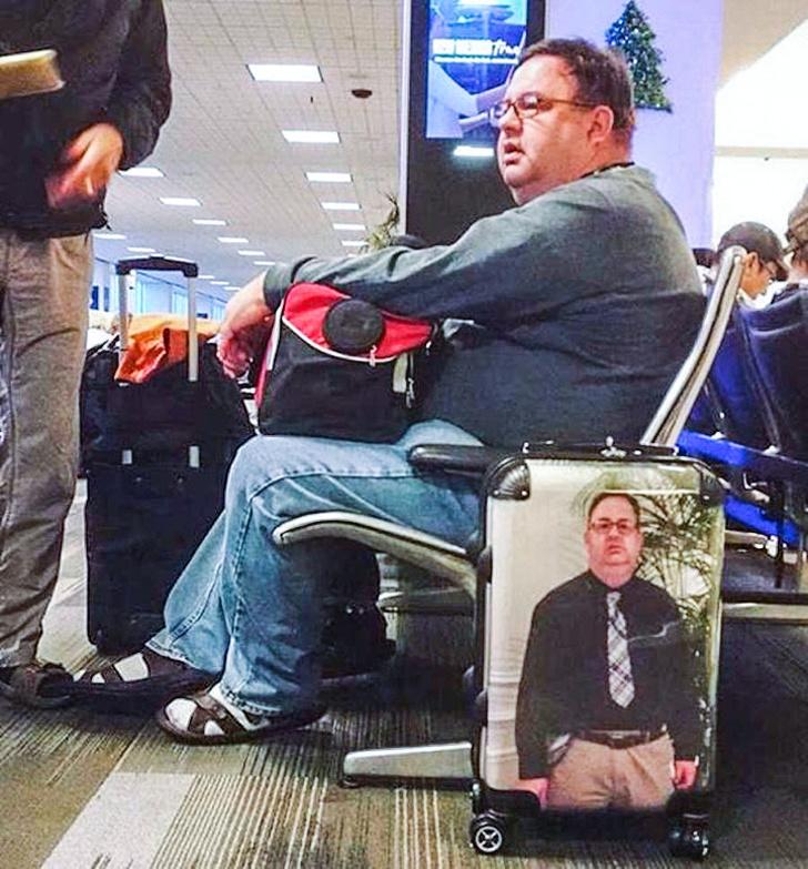 Смешные картинки в аэропорту, картинки про овец