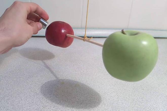 Подносим магнит к яблоку: ищем железо внутри Видео,магнит,Пространство,физика,химия,эксперимент,яблоко