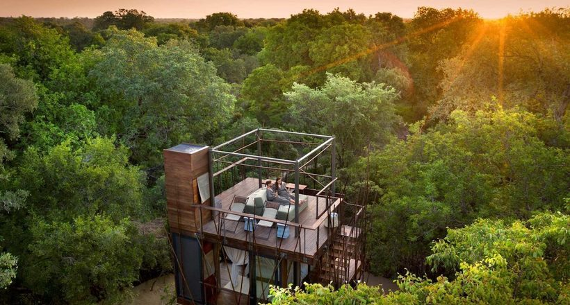 Великолепный «домик на дереве» в Африке, в котором можно ночевать под звездами