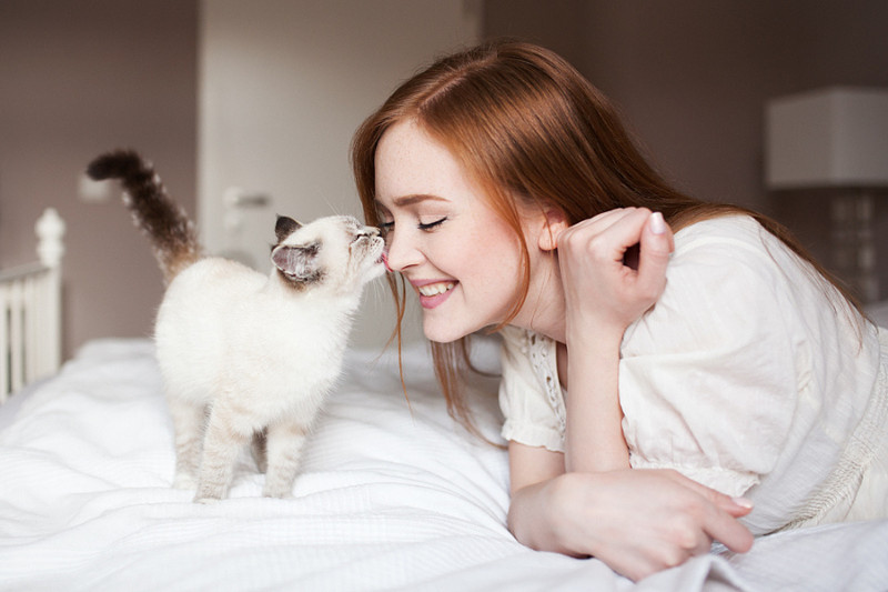 Фото и картинки кот и женщина