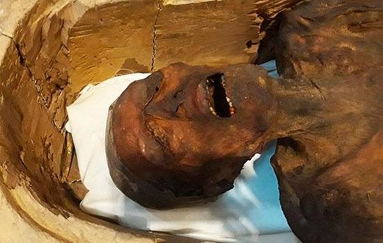 В Египте демонстрирует «Крич…