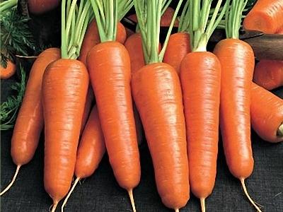 Уход за морковью летом