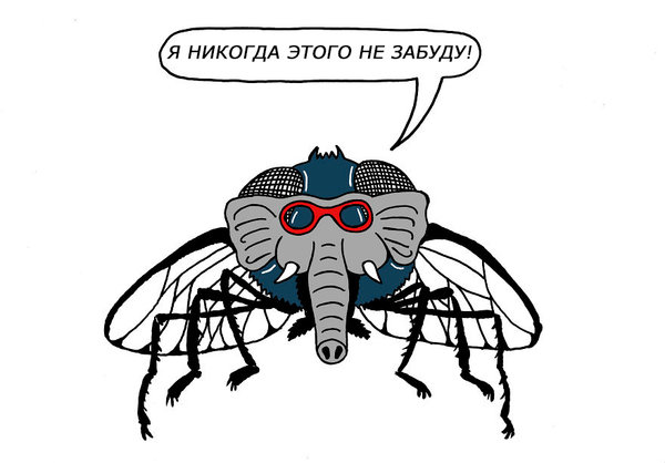 Русские выражения, которые о…