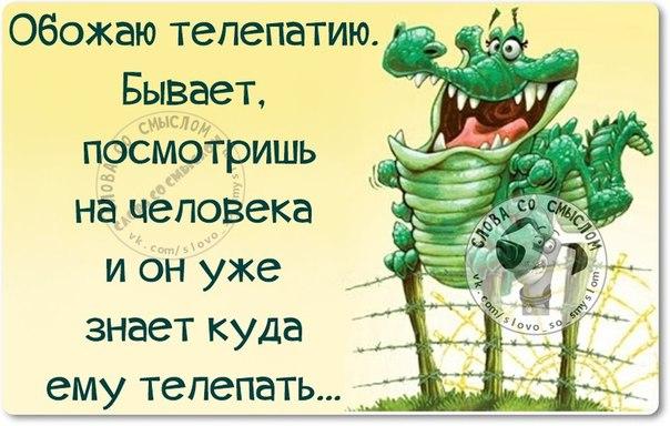 http://mtdata.ru/u22/photoCA73/20492667721-0/original.jpg