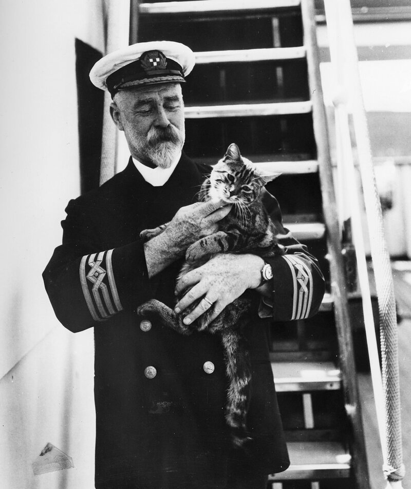 Капитан лайнера и кот; 1920-е годы история, ретро, фото