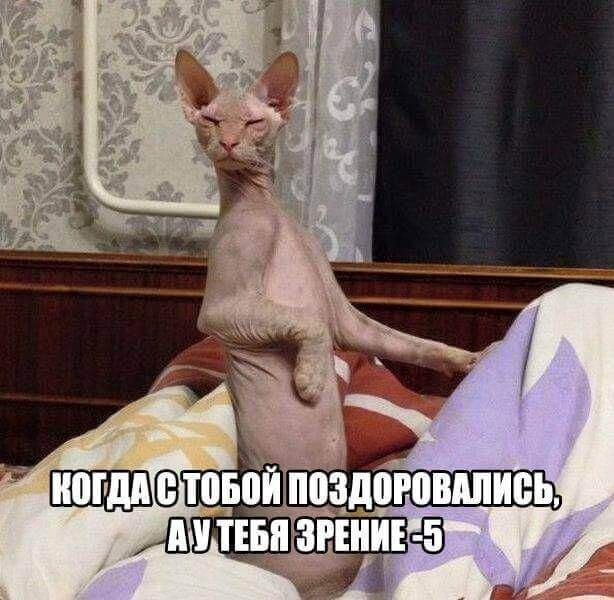 https://mtdata.ru/u22/photoDC6D/20594660600-0/original.jpeg#20594660600