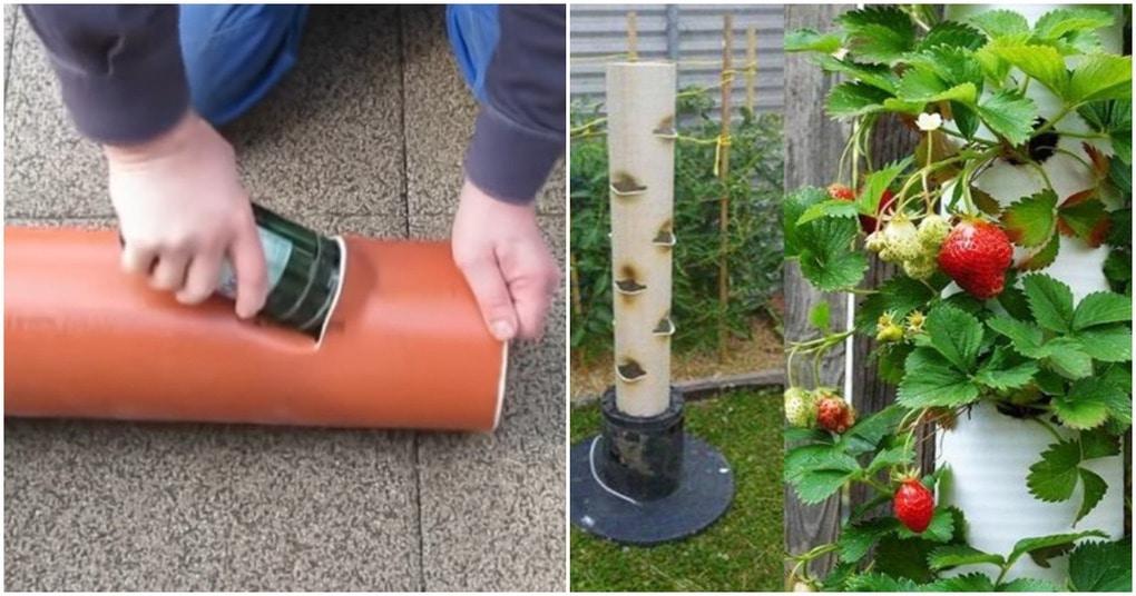 Вертикальная грядка из труб ПВХ — отличный способ сэкономить пространство и увеличить урожай