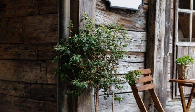 Весенний осмотр дачи: на что обратить внимание