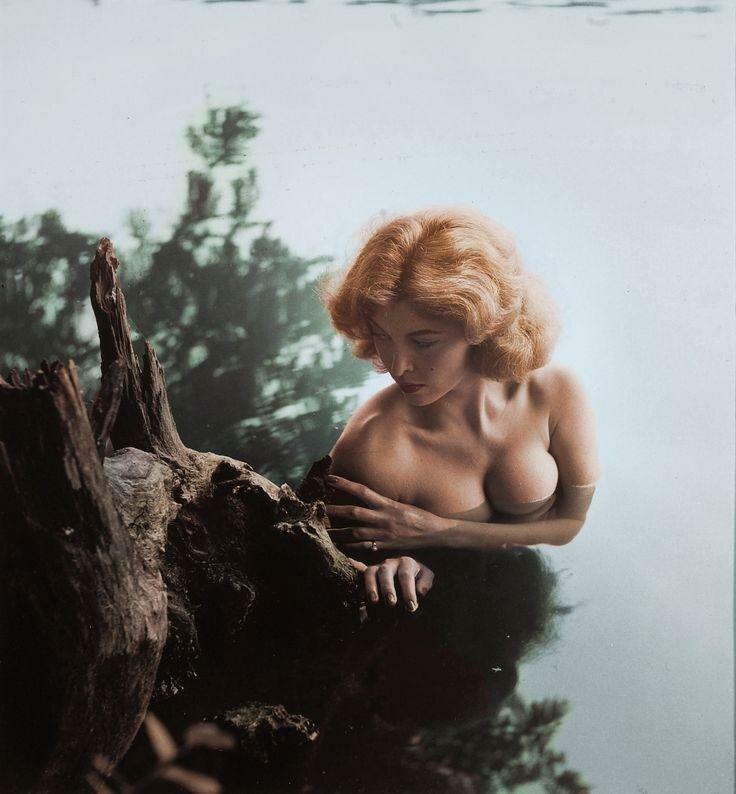 Американская актриса Тина Луиз, 1960-е история, ретро, фото