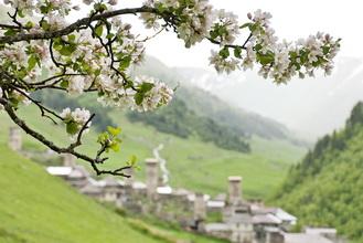 Грузия. Горы разных цветов