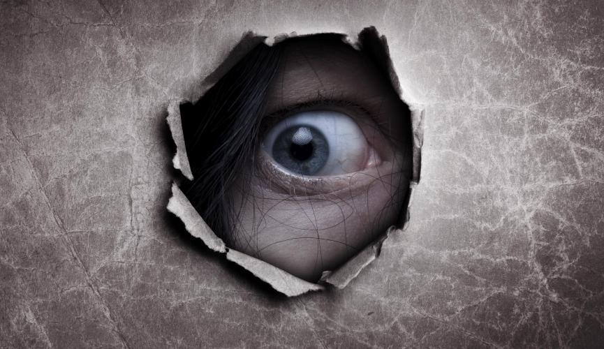 «Я тебя вижу, а ты меня нет!» или несколько самых странных случаев вуайеризма