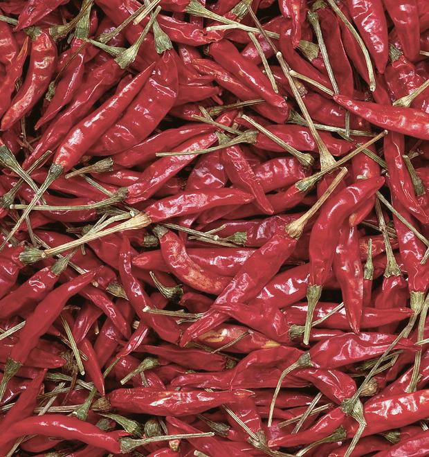 Острые ощущения: Гид для любителей жгучей еды — Культура на FURFUR