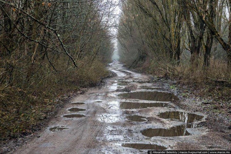 Мёртвый город Припять. Джунгли Чернобыля