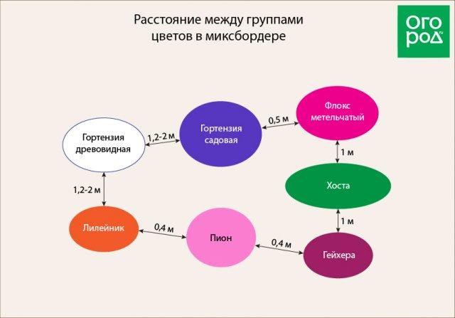 Расстояние между группами растений в миксбордере