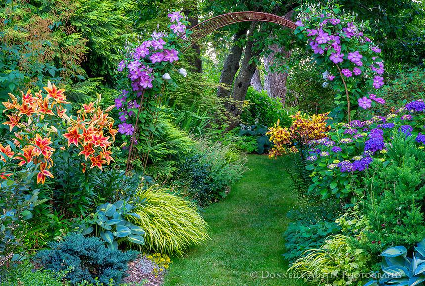 цветение в темном углу сада фото можно много