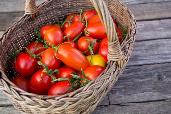 Томаты без рассады: а стоит ли? выращивание,дача,овощи,сад и огород,томаты
