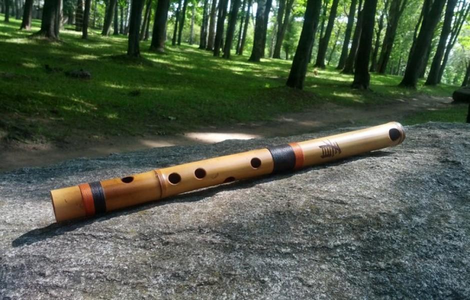 Удивительные факты о флейте
