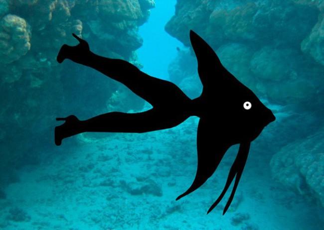 В водах Карибского бассейна выловили пришельца