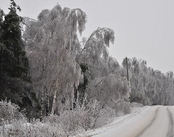 Тепло все же приближается к Москве