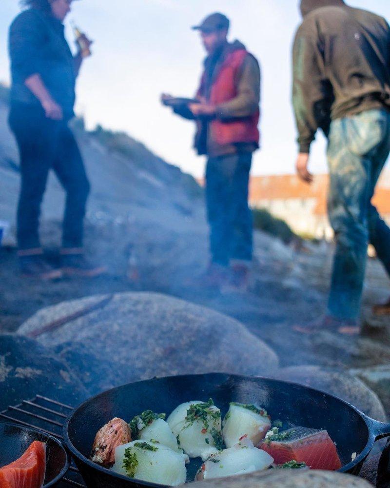 да и пикник хорошо пошел аляска, жизнь, лось, медведь, путешествие, сова
