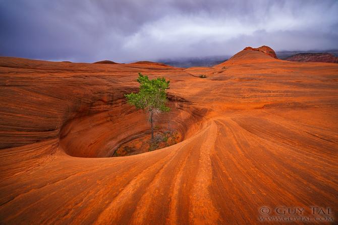 Песчаные миры, фотограф Guy Tal
