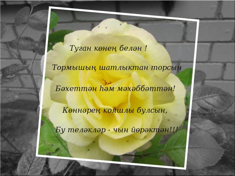 Поздравление на татарском энигэ