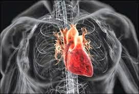 Ранние признаки заболевания сердца