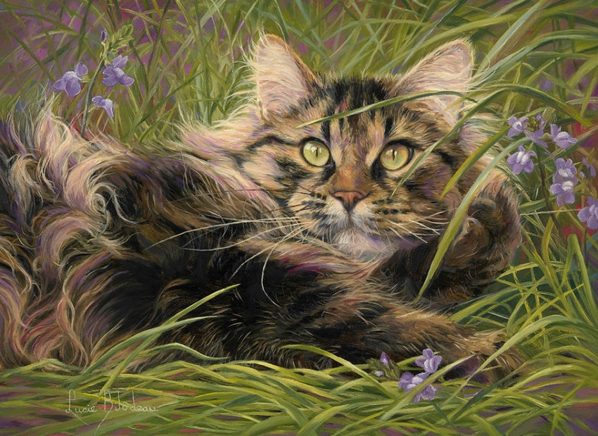 Lucie Bilodeau и ее любимые кошки