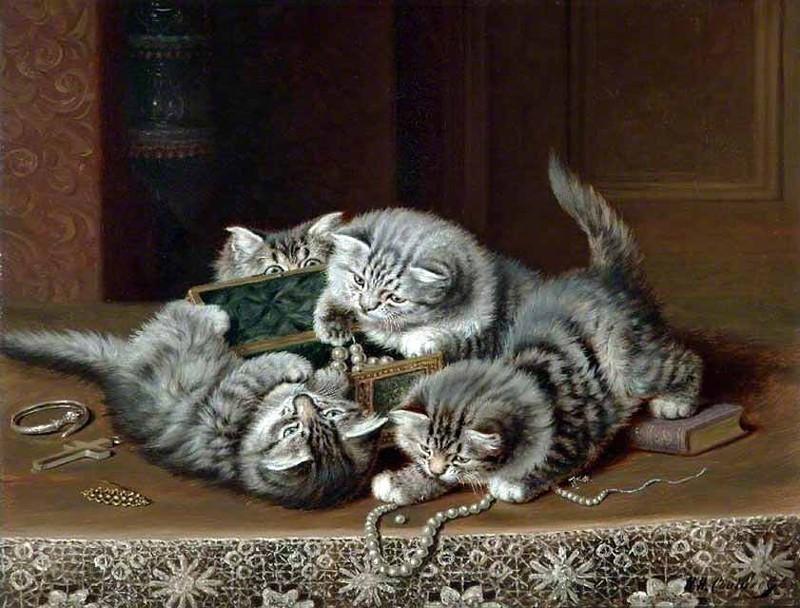 Деревенские кошки совсем не такие, как живущие в неге коты городские