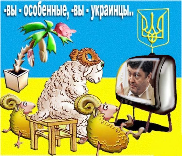 Анимашки, украинские прикольные картинки с надписями