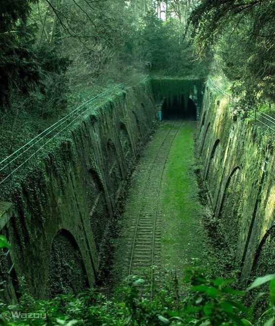 Линия Petite Ceinture, Париж. Это старая 32-километровая двухпутная железнодорожная линия которая проходила вокруг Парижа. Открытая к 1852 году линия с 1990 почти полностью заброшена. интересное, красота, тоннели, удивительное, факты