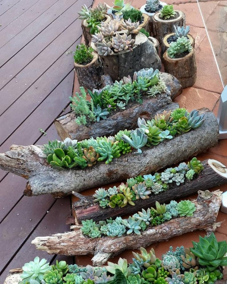 Когда бревна расцветают: использование в декоре спиленных деревьев