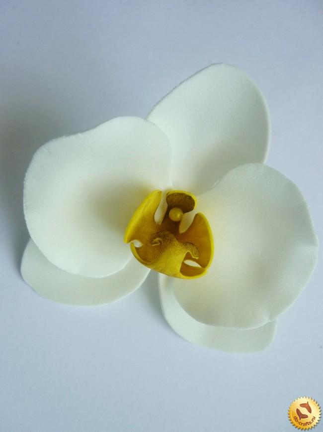 Орхидеи фаленопсис из фоамирана, мастер-класс »…