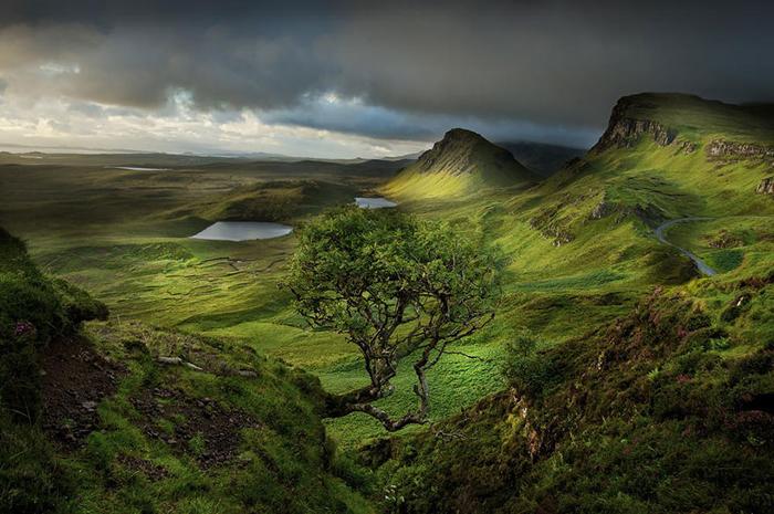 Изумрудные холмы Шотландии.