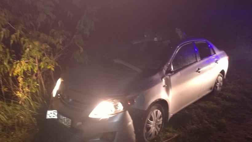 Автомобиль сбил лося на трас…