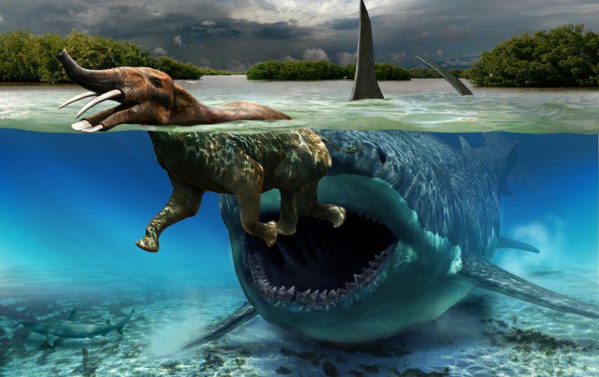 """Палеохудожник """"оживляет"""" динозавров на картинах"""