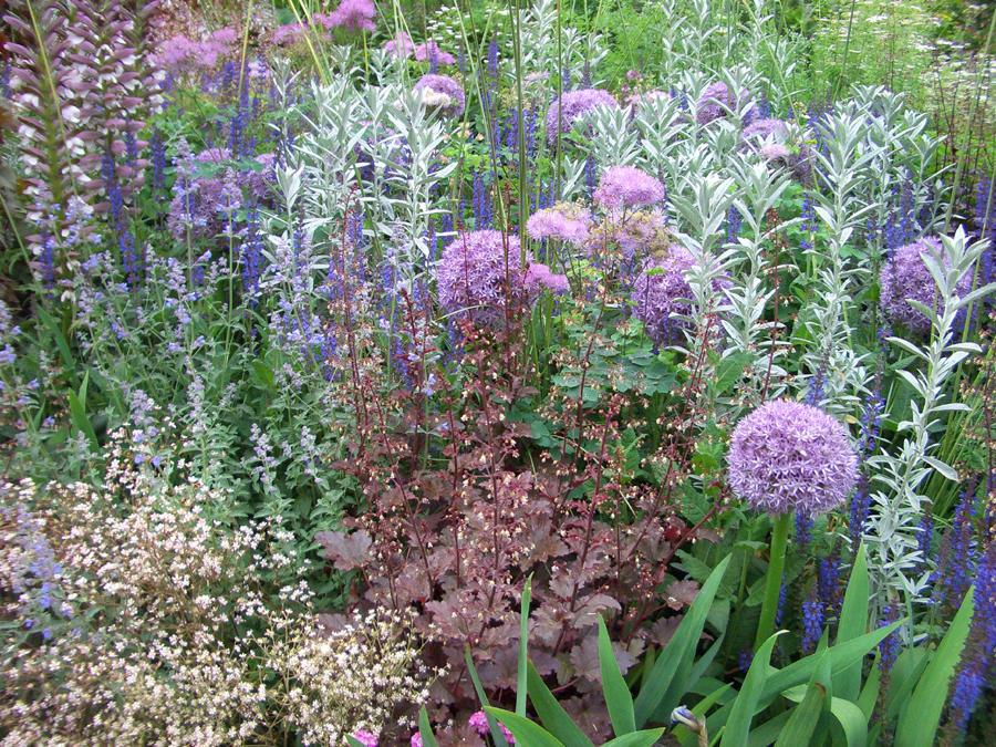 Садик пряных трав: идеи интересных композиций