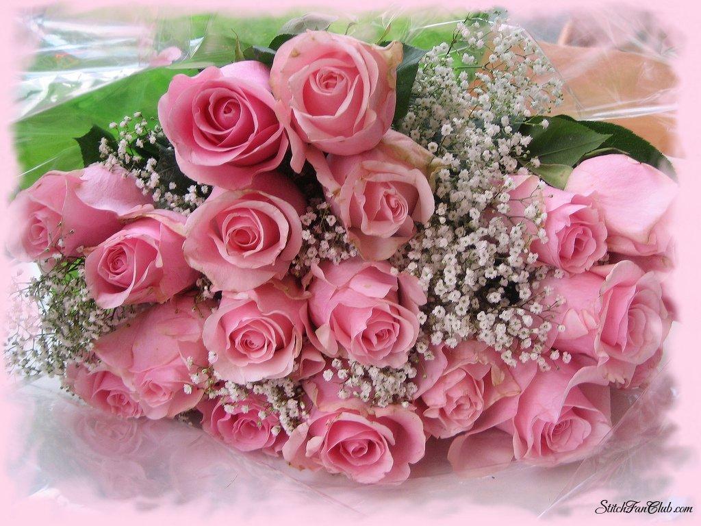 http://mtdata.ru/u23/photo2B53/20997317564-0/original.jpg