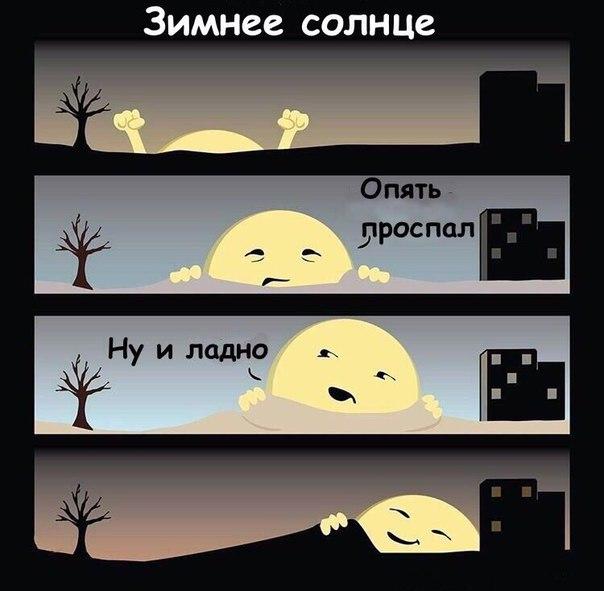 изображение: Зимнее солнце. - Опять проспал. Ну и ладно #Прикол